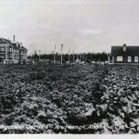 Railroad Hospital and garden, 1928