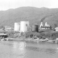 Kodiak from Near Island