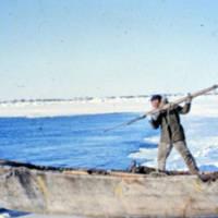 Man harpooning seal, Pt. Barrow AK.