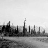Junction on the Alaska Highway near Tok, Alaska. 1943.