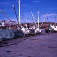 Processing crab, Unalaska, 1965