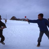 Baseball in the snow, 1981