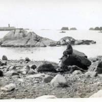Beach at Sitka<br />