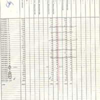 City/borough unification vote, 1975