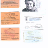 Identification, membership, and organization cards.
